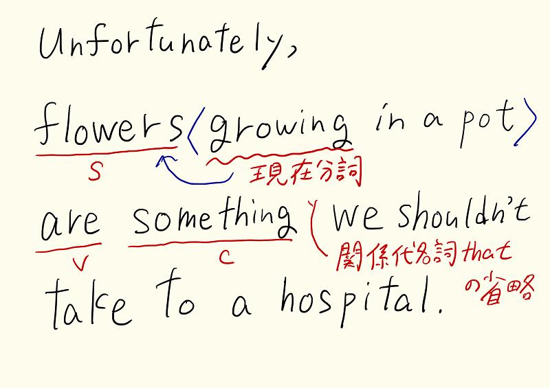 共通テスト(英語)の長文